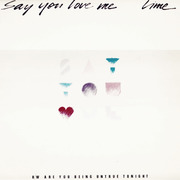 12'' - Lime - Say You Love Me / Are You Being Untrue Tonight