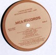 LP - Lynyrd Skynyrd - Skynyrd's First ... And Last