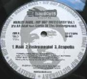 12'' - Marley Marl - Hip Hop Dictionary