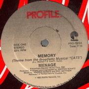 12'' - Menage - Memory