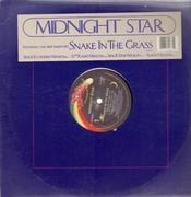 12'' - Midnight Star - Snake In The Grass