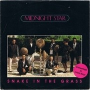 7'' - Midnight Star - Snake In The Grass - Red