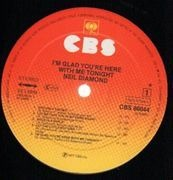 LP - Neil Diamond - I'm Glad You're Here With Me Tonight - textured cover