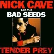 CD - Nick Cave & The Bad Seeds - Tender Prey