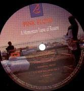 LP - Pink Floyd - A Momentary Lapse Of Reason