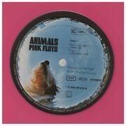 LP - Pink Floyd - Animals - Limited Edition / Pink Vinyl