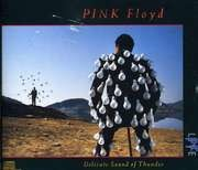 Double CD - Pink Floyd - Delicate Sound Of Thunder