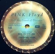 Double LP - Pink Floyd - Delicate Sound Of Thunder - UK