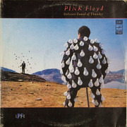 Double LP - Pink Floyd - Delicate Sound Of Thunder - Gatefold