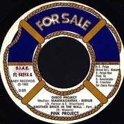 7inch Vinyl Single - Pink Project - Disco Project