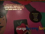 12inch Vinyl Single - Prince And The Revolution - Raspberry Beret