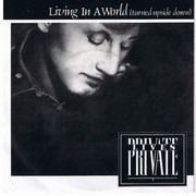 7inch Vinyl Single - Private Lives - Living In A World (Turned Upside Down)