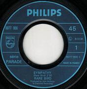 7inch Vinyl Single - Rare Bird - Sympathy