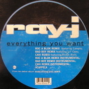 12inch Vinyl Single - Ray J - Everything You Want
