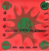 LP - Rebel MC - Culture