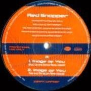 12'' - Red Snapper - Image Of You