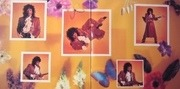 LP - Rick James - Wonderful - Gatefold