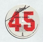12'' - Robert Palmer - I Didn't Mean To Turn You On - Promo