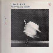 LP - Robert Plant - The Principle Of Moments