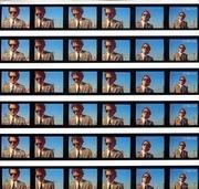 7'' - Robert Palmer - Discipline Of Love - Gatefold Sleeve