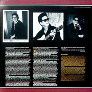 Double LP - Roy Orbison - For The Lonely: A Roy Orbison Anthology, 1956-1965