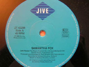12inch Vinyl Single - Samantha Fox - Love House
