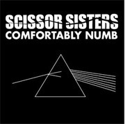 12'' - Scissor Sisters - Comfortably Numb