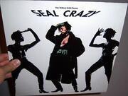 12'' - Seal - Crazy (The William Orbit Remix)