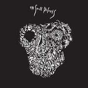 LP - Skull Defekts - Skull Defekts