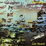 Double LP - Steve Hillage - Live Herald