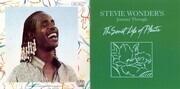 Double CD - Stevie Wonder - Journey Through The Secret Life Of Plants