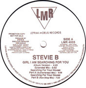 12'' - Stevie B - Girl I Am Searching For You - Promo