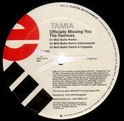 12inch Vinyl Single - Tamia - Officially Missing You (The Remixes)