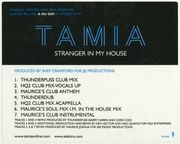 12'' - Tamia - Stranger In My House - Side A & B ONLY
