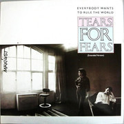 12inch Vinyl Single - Tears For Fears - Everybody Wants To Rule The World (Extended Version)