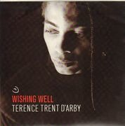 12inch Vinyl Single - Terence Trent D'Arby - Wishing Well
