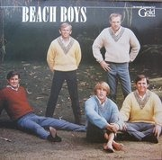 Double LP - The Beach Boys - Gold Collection