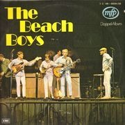 Double LP - The Beach Boys - The Beach Boys
