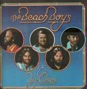 LP - The Beach Boys - 15 Big Ones