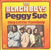 7inch Vinyl Single - The Beach Boys - Peggy Sue