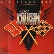 LP - The Beach Boys - Still Cruisin'