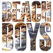 LP - The Beach Boys - The Beach Boys - Still sealed