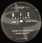 12'' - The Biz - Falling (Remixes)