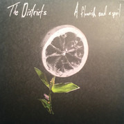 LP - The Districts - A Flourish And A Spoil - Still Sealed