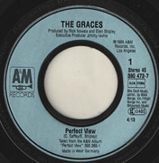 7inch Vinyl Single - The Graces - Perfect View
