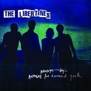 LP - The Libertines - Anthems For Doomed Youth (vinyl)