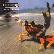 Double LP - Prodigy - The Fat Of The Land