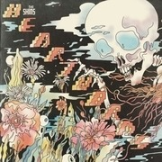 Double LP & MP3 - The Shins - Heartworms