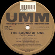 12inch Vinyl Single - The Sound Of One - Do You Want It