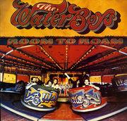 LP - The Waterboys - Room To Roam